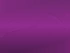 FPN-loyalty-Success-logo